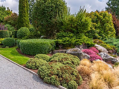 High-end landscaping design with colorful shrubs, big stone decor, colorful plants, tall trees, and long alley.